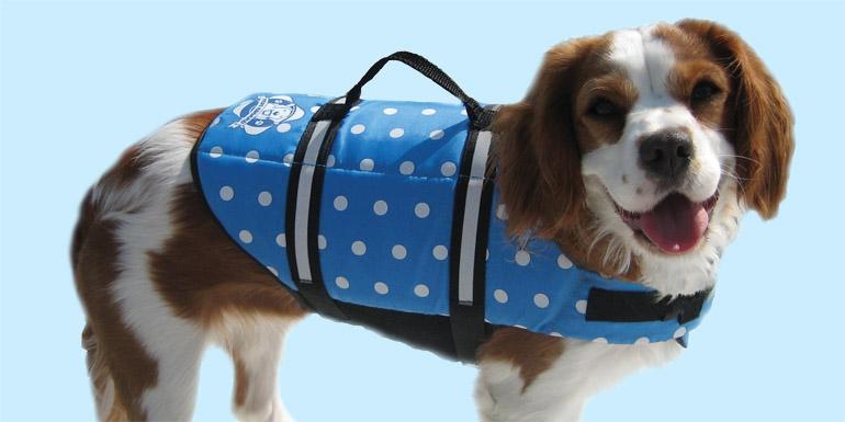 Designer Pet Life Jackets