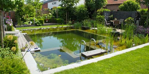 Natural Swimming Pool Example 3
