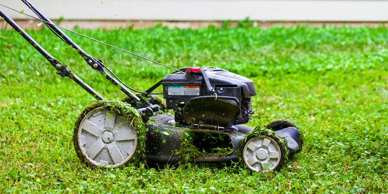 The class actions concern all Canadians who purchased certain major brand-name gas-powered lawn mowers labelled at 30 horsepower or less between Jan. 1, 1994 and Dec. 31, 2012 which were manufactured or labelled by the defendants.