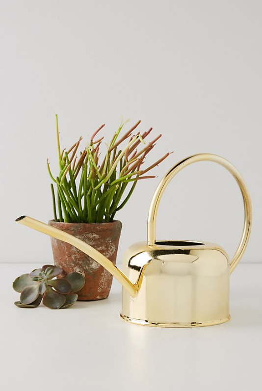 Golden Watering Can, $38, anthropologie.com
