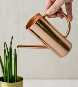 Roxie Rose Gold Mini Watering Can, $14, urbanoutfitters.com