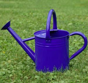 Gardener's Select 1.85-Gallon Watering Can, $34, wayfair.com