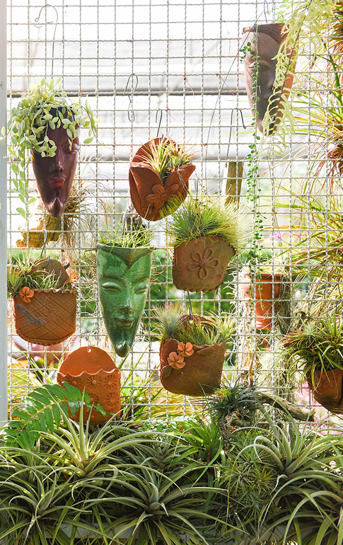 You can even blend the exterior with the interior through wall gardens, shelving, and plant slings.